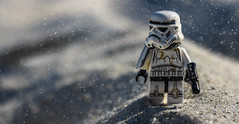 Patrolling The Dunes (Lego_LUTs) Tags: yellow purple green blue storm trooper star wars war lego outdoors clone troopers first order blasters afol minifigs minifigures bricks blocks canon toy toys force legos t3i republic people photoadd atst death rogue one dirt practical effects orange 60mm