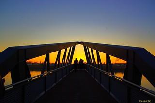 sunsetsig3699