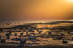 Bajamar (AvideCai) Tags: avidecai atardecer cádiz playa tamron2470 agua mar cielo paisaje