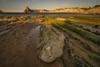 La roca. (Amparo Hervella) Tags: playadecerrías liencres españa spain playa roca agua mar paisaje cielo largaexposición color d7000 nikon nikond7000 comunidadespañola naturaleza