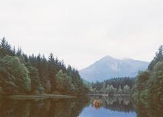 CNV00019 (SB_McAllister) Tags: fujica fujinon stx1 glencoe scotland filmisntdead lomography film 50mm