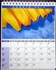 Watercolor calendar 2017 - 03 - DSC01547 (Dona Minúcia) Tags: art painting watercolor calendar 2017 stilllife arte pintura aquarela calendário naturezaimóvel naturezamorta brasíliadf brazil fruit banana food fruta alimento comida
