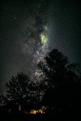 Silhouettes (Valter Patrial) Tags: silhouettes milky way stars night lights landscape silhuetas via láctea estrelas noite luzes paisagem trees