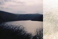Lake (avenwildsmith) Tags: film 35mm nature devon countryside landscape analog analogue kodak retinette 1b grain england britain wild wilderness lake water dark overcast cloudy double exposure 35mmfilm kodakretinette1b