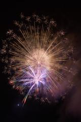 with moon (peaceful-jp-scenery (busy)) Tags: fireworks display summer festival lakesyoji fuji5lakes fujigoko 精進湖涼湖祭 精進湖 富士五湖 富士河口湖町 山梨 日本 sony α99ⅱ a99m2 ilca99m2 amount sigma24105mmf4dg