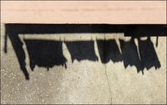 Ombre di bucato (Maulamb) Tags: ombre bucato pannistesi