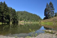 Akgöl (esercakarlar) Tags: akgöl sinop landscape travel reflection forest sky lake