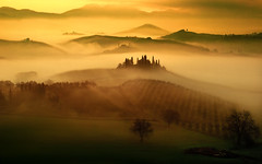 Peace of mind (Massetti Fabrizio) Tags: tuscany toscana belvedere valdorcia landscape landscapes light phaseone pienza panorami fog tree sunrise sun sunlight siena sunset rural alba sanquirico rodenstock