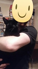 Mon, Aug 7th, 2017 Lost Male Cat - Fairhaven Strand Street, Malahide, Fingal, Dublin (Lost and Found Pets Ireland) Tags: lostcatfairhavenstrandstreetdublin lost cat fairhaven strand street dublin august 2017