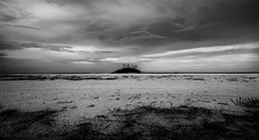 The Search for New Life Forms (JDS Fine Art Photography) Tags: bw clouds inspirational beauty naturesbeauty naturalbeauty sand
