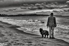 Man and Dog (Evoljo) Tags: ballineskerbeach ireland beach sand sea irishsea water man dog sky clouds blackwhite nikon d500
