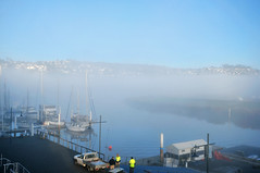 Fog in the morning | Launceston, Tasmania (Ping Timeout) Tags: tasmania tassie state australia vacation holiday june 2017 island south commonwealth oz bass strait hobart tas cold morning weather fog low mist blur blue water waterfront town city harbour harbor sky cloud launceston north sea peppers port hotel balcony pier marina boat yacht people work reflection esk river scenery beautiful sight outdoor sunrise sun tamar creek car truck ute holden ford visibility