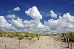 Hondsbossche zeewering (jan_vrouwe) Tags: beachentrance sand beach clouds sky blue golf sea surf beachgrass