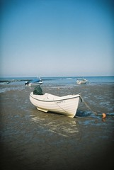 Shanty 2 (bigalid) Tags: film holga 135bc 35mm july 2017 lomography100cn c41 boat beach sea plastic