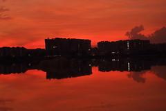 Pink reflection (ravikanth_3110) Tags: canon landscape lake reflection india hyderabad pink water