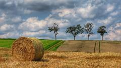 Summertime blues (RainerSchuetz) Tags: summer field stubblefield baleofstraw agriculture trees explore explored