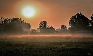 Hajnali csodák..
