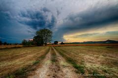 Cacciatore di nuvole (Gianni Armano) Tags: cacciatore di nuvole lobbi alessandria montecastello piemonte italia foto gianni armano photo flickr