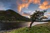 Loch Killin .. (Gordie Broon.) Tags: lochkillin sunset whitebridge invernessshire scottishhighlands landscape hills garragielodge sronlairig heuvels paysage caledonia scenery paisaje collines lonetree silhouette schottland ecosse summer escocia alba scenic scozia northernscotland szkocja canon5dmklll remote gordiebroonphotography 2017 atardecer ferns canon1635f4l lago lac sjo gol see meer rural evening geotagged