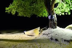 In The Dark (Buenouve ) Tags: boat night tree arbol noche dark bote canoa arena playa sand beach sanandresislas nocturnal travel trip viaje viajar vacation aground encalla