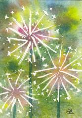ACEO nº7 Dandelions (Sonia Aguiar (Mallorca)) Tags: aceo watercolor aquarell soniaaguiar acuarela miniature flowers dandelions