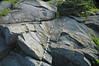 Quartz vein in sandstone (Thunderhead Sandstone, Neoproterozoic; Clingmans Dome, Great Smoky Mountains, North Carolina, USA) 3 (James St. John) Tags: thunderhead sandstone precambrian proterozoic neoproterozoic clingmans dome great smoky mountains national park north carolina quartz vein veins