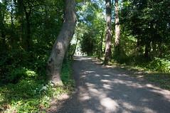 Terrapin Nature Area, Stevensville MD 20 (Larry Miller) Tags: naturepark conservation chesapeakebay maryland 2017