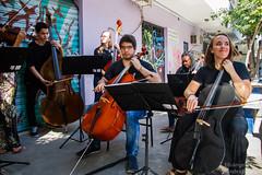 Orquestra Camerata Laranjeiras