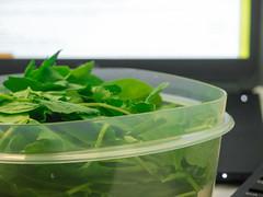 74: 3.5 Ounces of Greens