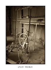 Abandoned trike with extra wheels (sugarbellaleah) Tags: trike bicycle wheels age old dilapidated rusty cobwebs dusty disused abandoned shed outbuilding