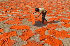 Working at leather factory! (ashik mahmud 1847) Tags: bangladesh nikkor d5100 pattern group working human boy children kids leatherfactory