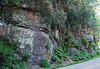 Thunderhead Sandstone (Neoproterozoic; Chimney Tops overlook roadcut, Great Smoky Mountains, Tennessee, USA) 3 (James St. John) Tags: thunderhead sandstone precambrian proterozoic neoproterozoic clingmans dome great smoky mountains national park tennessee