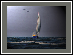 Sailing in Morten Bay. (agphoto100) Tags: boat sail sailing birds mast water sea wave blue sky lumixfz20 fz20 panasonic frame outdoor bay impressionist ocean beach shore bird agphoto100