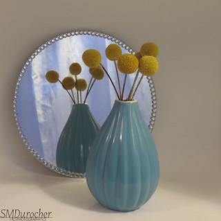 20170915 FFri Mirror Vase c