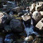 o rio (10)