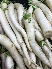IMG_0591 (ccrzone) Tags: ccrphotography ccrzone ccr ccrpicture photography photooftheday photograph picture picoftheday life lovelife livelife loveit lens traveling travel trip travelphoto travelpicture travelphotography travelling vegetable veggie healthylife healthy daikon