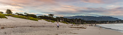 A Morning on the Beach at Carmel-by-the Sea (Jill Clardy) Tags: california carmel northamerica usa beach ocean sea whitesand sunrise dawn monterey pine trees surf waves walkers joggers dogs 201403094b4a4119pano explore explored