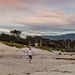 A Morning on the Beach at Carmel-by-the Sea (Jill Clardy) Tags: california carmel northamerica usa beach ocean sea whitesand sunrise dawn monterey pine trees surf waves walkers joggers dogs 201403094b4a4119pano