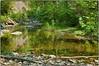 Quiet part of Laurel Falls (Steve4343) Tags: nikon d70s laurel falls stream hampton tennessee green yellow river creek laurelfalls appalachian trail steve4343