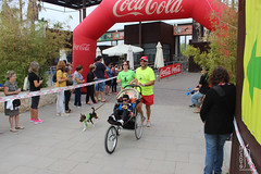 "Llegada de la carrera - 5ª Can-rrera Popular de Valencia • <a style=""font-size:0.8em;"" href=""http://www.flickr.com/photos/145784091@N07/37427168111/"" target=""_blank"">View on Flickr</a>"