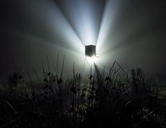 Death Star (Eifeltopia) Tags: silhouette deerstand perch foggy neblig rays mist fog hightseat surreal hochsitz eifel südeifel wiese meadow grass ground flashlight torch long exposure langzeitbelichtung deathstar lights misteriös mysterious samyang10mm28 beams