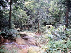 1994_Singapore_2016-07-18_Photo_151 (Matthias & Paula) Tags: singapore sentosa kuala lumpur malaysia cameron highlands zoo japanese gardens