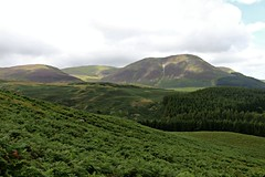 The Loweswater Fells group (clivenorton) Tags: carlingknott wainwrights