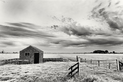 Shed In A High Key Landscape (Alfred Grupstra) Tags: blackandwhite ruralscene fence nature old landscape nopeople outdoors farm cloudsky oldfashioned sky scenics woodmaterial nonurbanscene obsolete grass abandoned field rustic shed