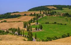 DSC02768 Tuscany.. (Jeff Lack Wildlife&Nature) Tags: landscape cypress tuscany italy montichiello hillside countryside famousroads cypesstrees trees