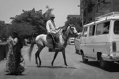 Giza Street. (Livia Lopez) Tags: egypt cairo giza horse man woman street blackandwhite blancoynegro noiretblanc van bw road travel egipto caballo mujer hombre calle carretera viajar monocromo fotografia photography camioneta