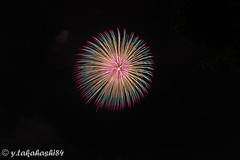_IMG6403.jpg (y.takahashi84) Tags: hanabi fireworks 花火 東松山 日本の夏 japan saitama