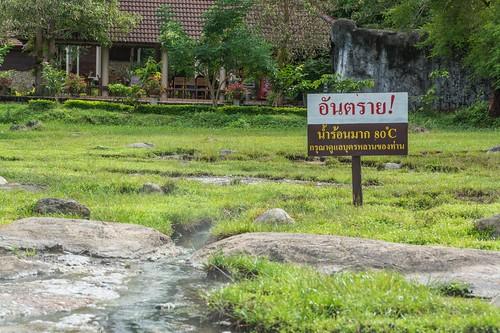 fang - thailande 4