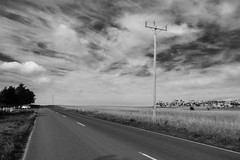 Always loook on the bright side of life (Latecomer (4tunesphotos)) Tags: geelong winter greenhill three bw