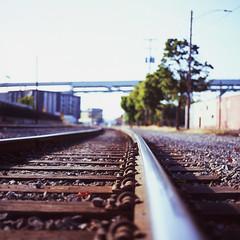 Grease (mattt1970) Tags: carlzeissplanarcft80mmf28 fujivelvia100 hasselblad500cm 6x6 mediumformat analog film portland oregon traintracks